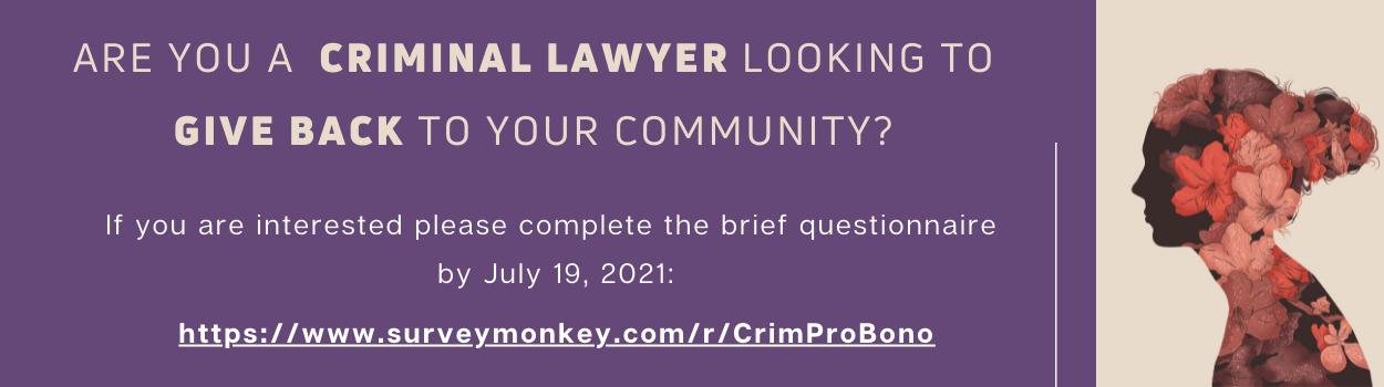 promo image for criminalization pro bono lawyer search